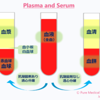 Plasma and serum