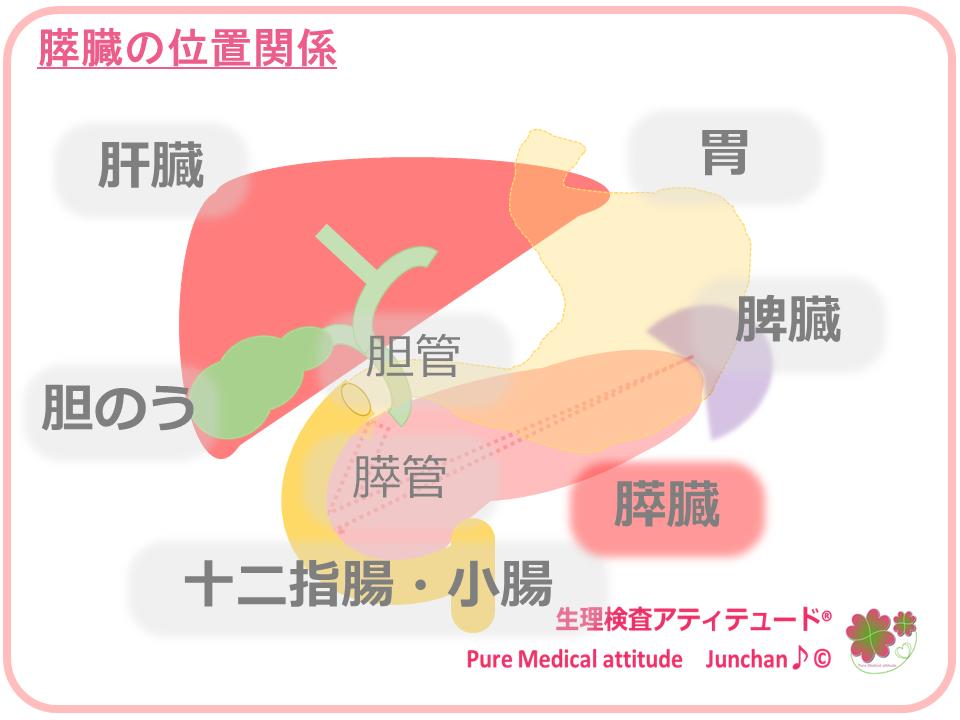 アルコールと癌(がん) | e-ヘルスネット 情報提供