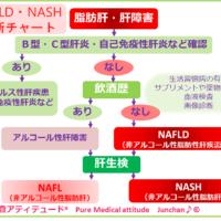 NASH・NAFLD診断チャート