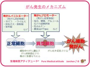 がん発生のメカニズム