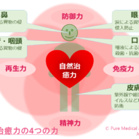 自然治癒力の4つの力