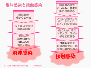 飛沫感染と接触感染