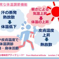 正常な体温調節機能