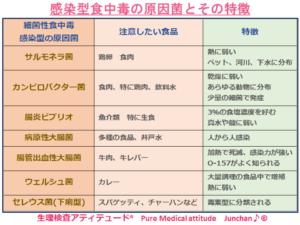 感染型食中毒の原因菌とその特徴