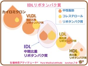 IDLリポタンパク質