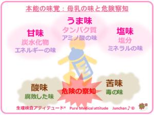 本能の味覚:母乳の味と危険察知