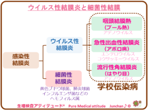 ウイルス性結膜炎と細菌性結膜