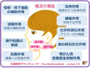 唾液の機能