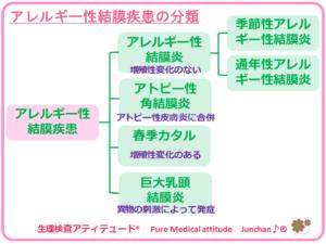 アレルギー性結膜疾患の分類