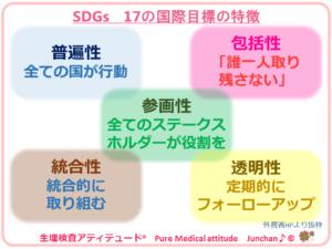 SDGs 17の国際目標の特徴