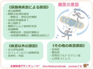頻尿の原因