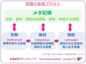 記憶処理のプロセス