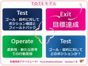 T.O.T.Eモデル