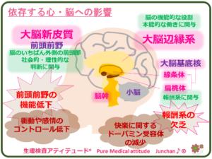 依存する心・脳への影響