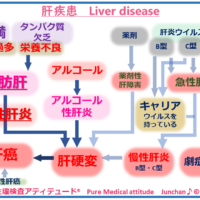 肝疾患 Liver disease
