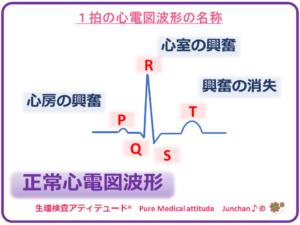 1拍の心電図波形の名称