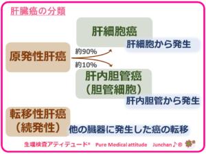肝臓癌の分類