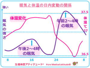 眠気と体温の日内変動の関係