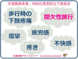 末梢動脈疾患・PADの典型的な下肢症状