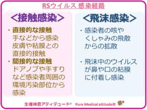 RSウイルスの感染経路