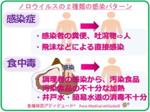 ノロウイルスの2種類の感染パターン
