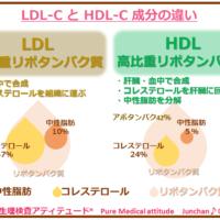 LDL-C と HDL-C 成分の違い
