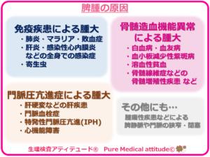 脾腫の原因