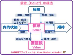 信念の構造