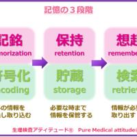 記憶の3段階