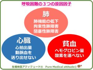 呼吸困難の3つの原因因子
