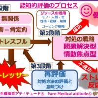 認知的評価のプロセス